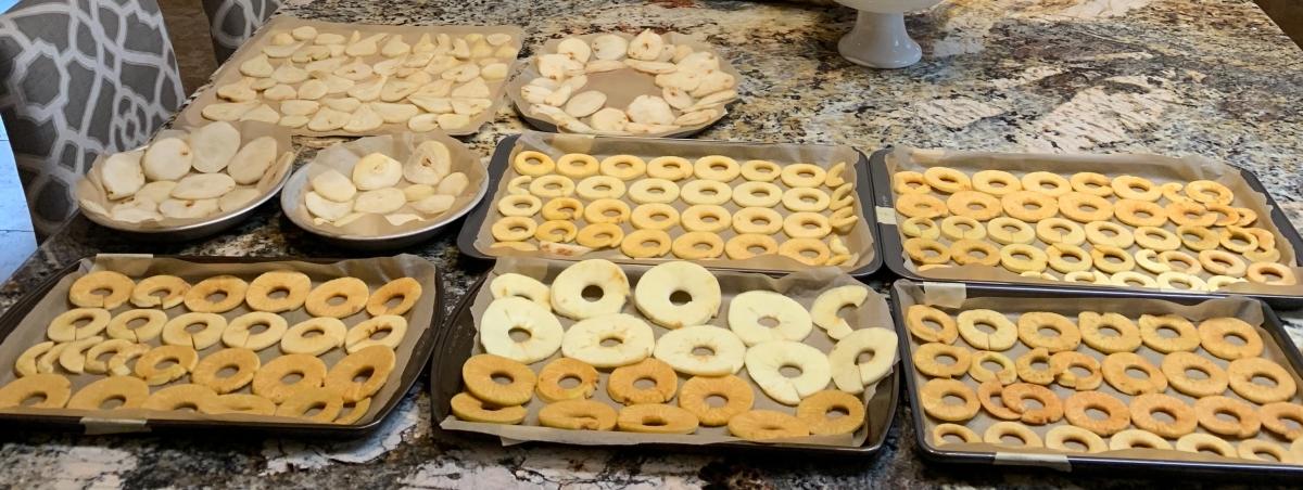 Apples Varieties prepared for Drying
