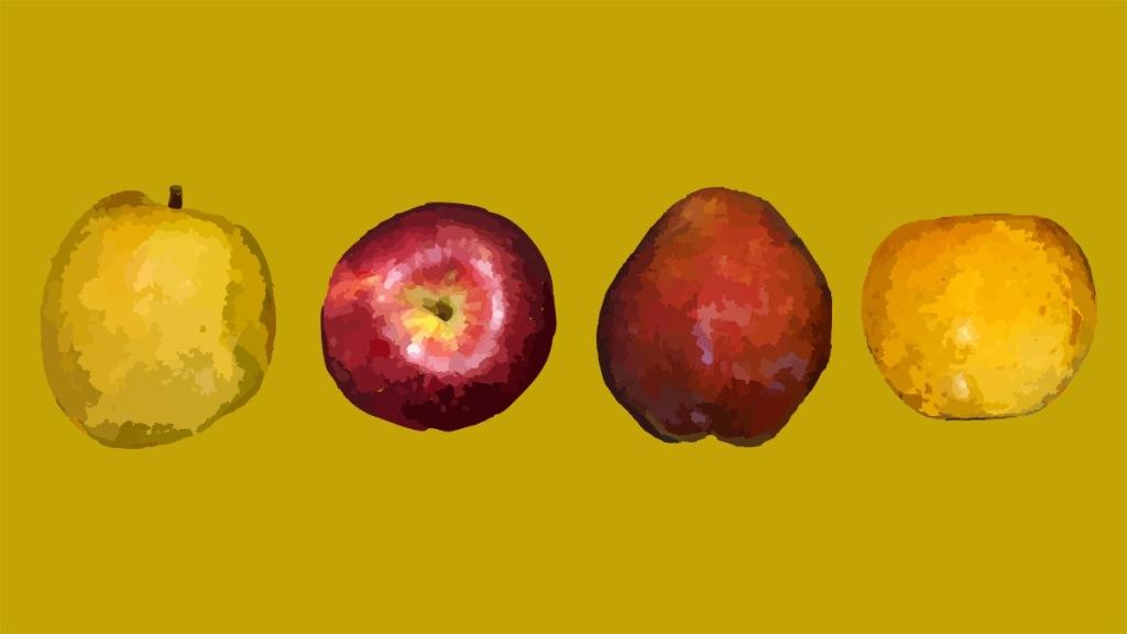 Apples for Hard Cider Recipe.