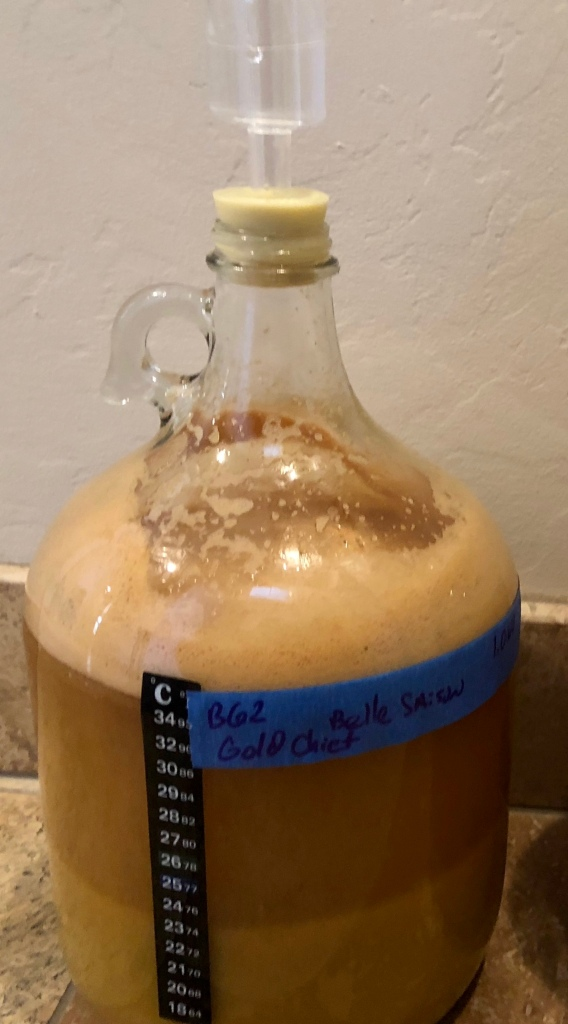 Carboy with Fermenting Hard Cider