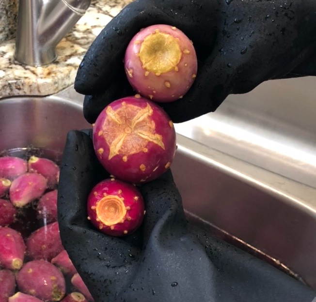 Prickly Pear Fruit Ripeness: Flat Top