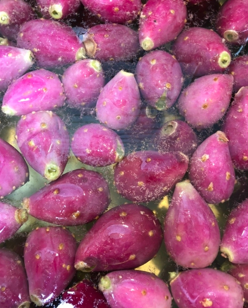 Prickly Pear Fruit: Washing off the dust and hairlike spines.