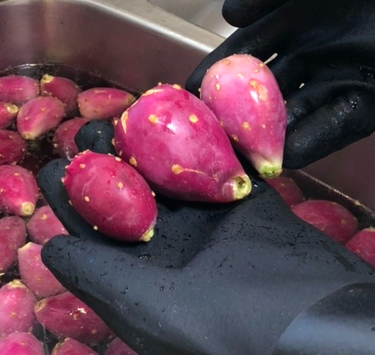 Prickly Pear Fruits: Sizes and Color