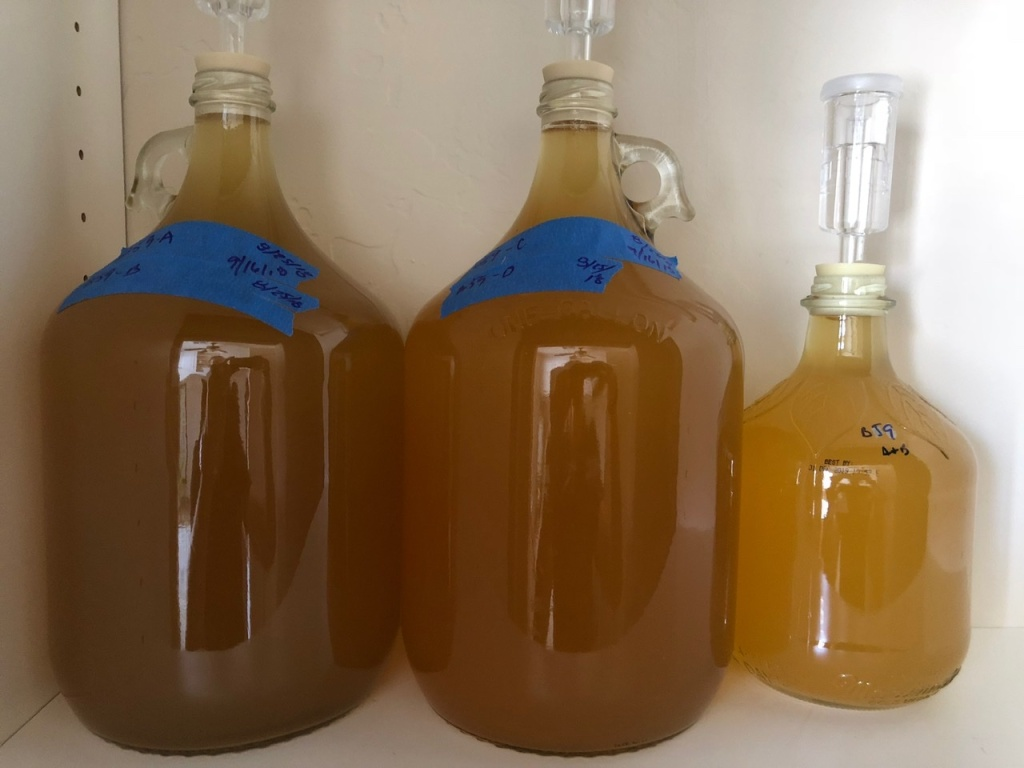 Hard Cider: Aged and Ready for Bottling