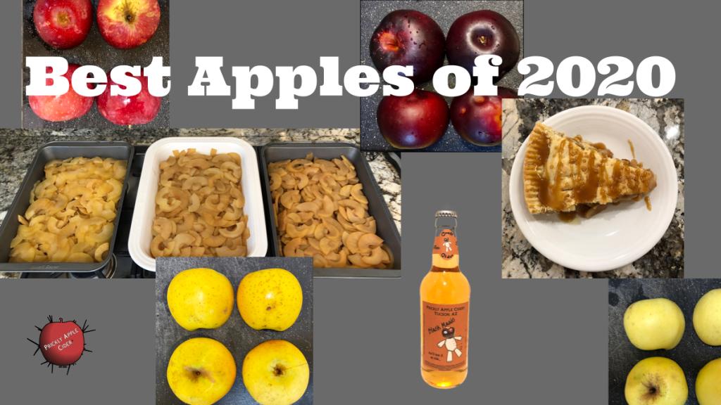 Best Apples of 2020
