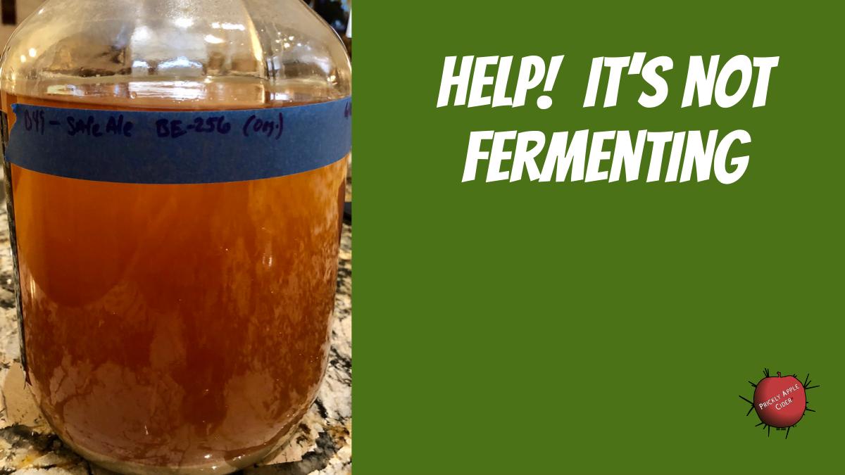 Not Fermenting