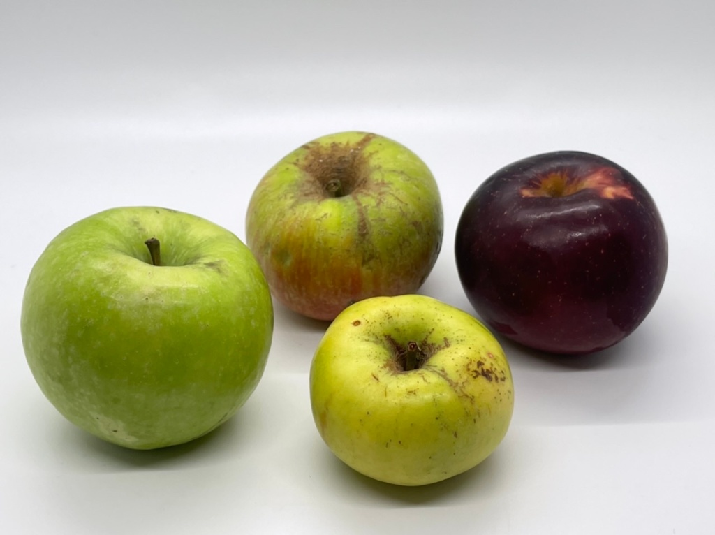 Apples and Acids: The most common acids in hard cider