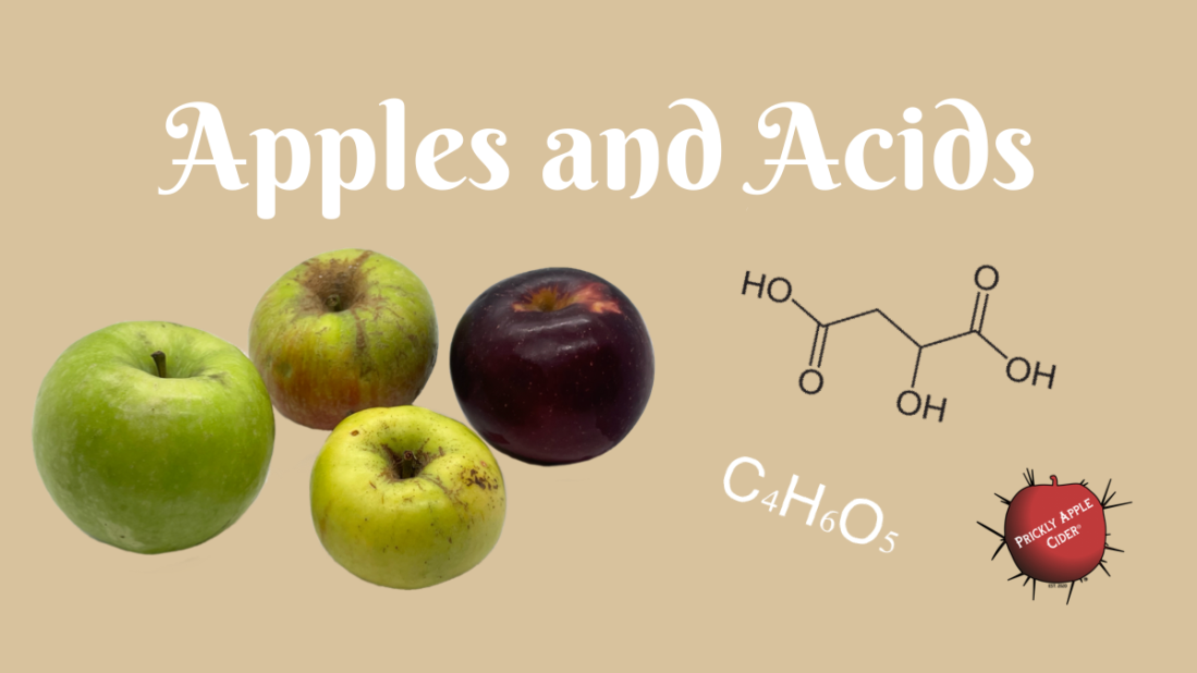 Apples and Acids: The common acids in hard cider