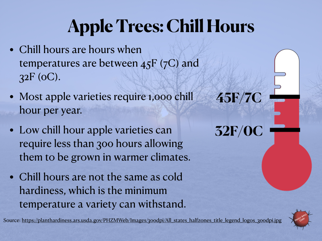 Apple Trees: Chill Hours
