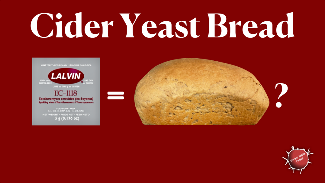 Making bread from cider yeast.