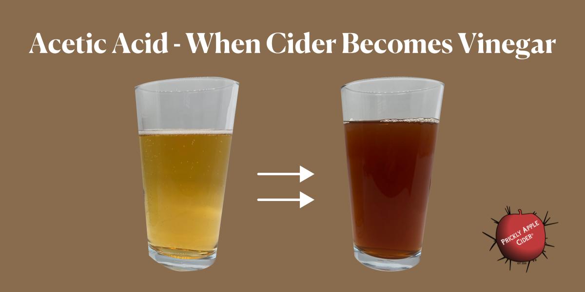 When cider becomes vinegar - acetic acid