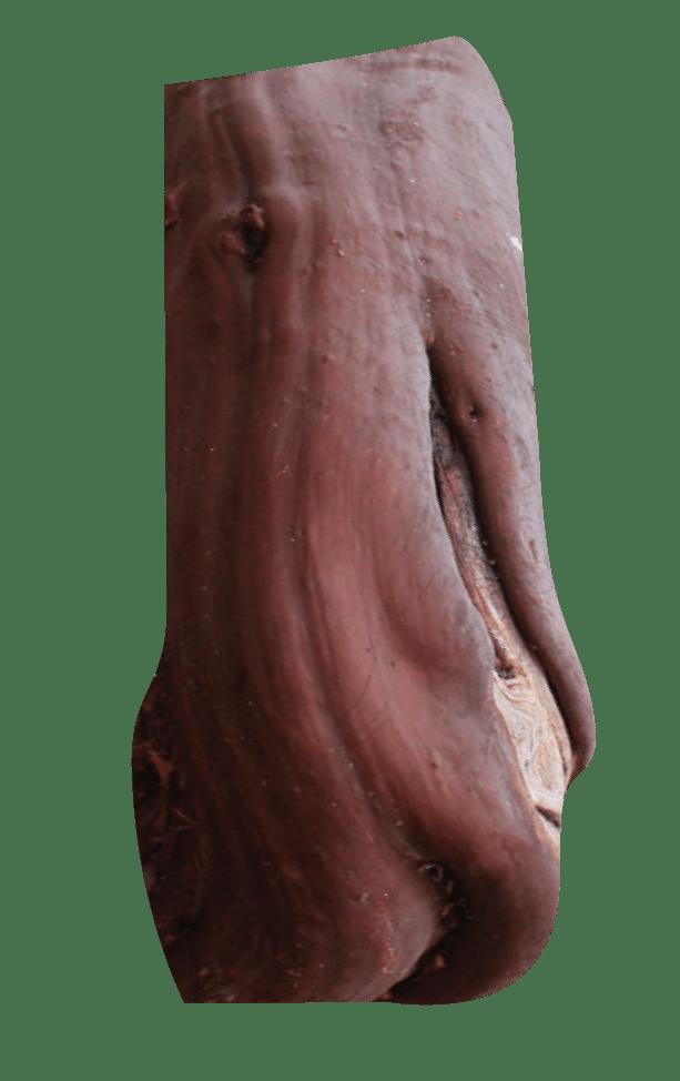 The bark of the manzanita tree.