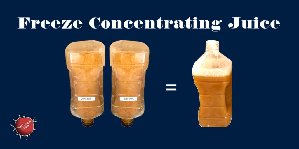 Freeze Concentrating Apple Juice